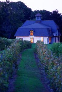 A Day at Historic Greenvale Vineyards @ Greenvale Vineyards | Portsmouth | Rhode Island | United States